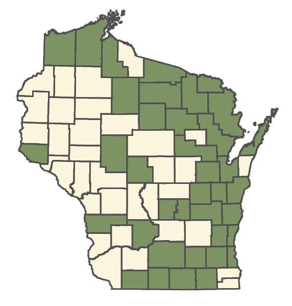 Agrostis stolonifera dot map