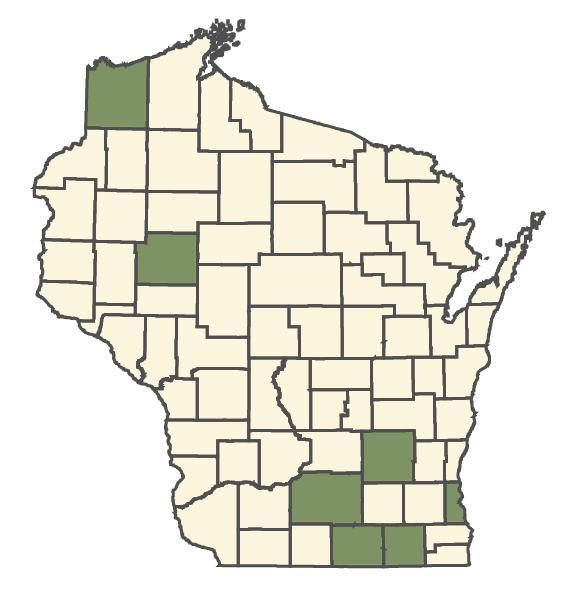 Bromus racemosus dot map