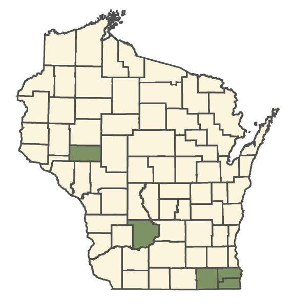 Bromus squarrosus dot map