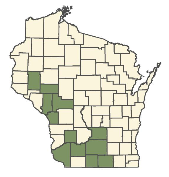 Carex davisii dot map