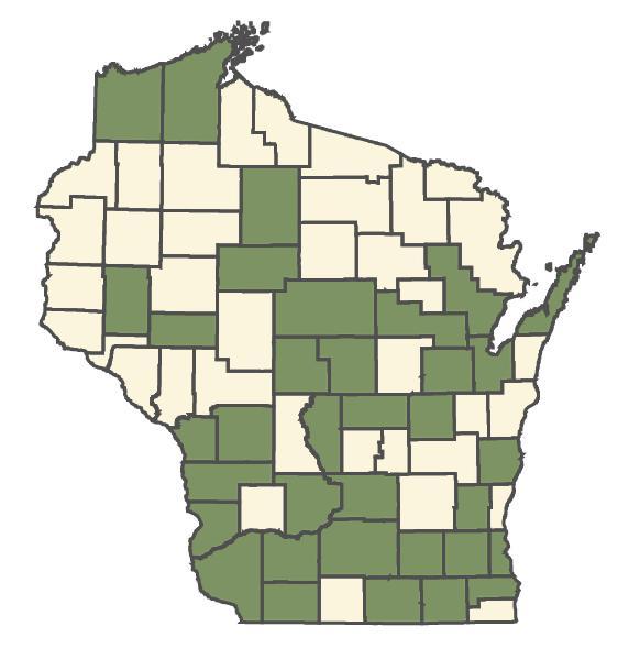 Convallaria majalis dot map