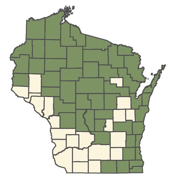 Drosera rotundifolia dot map