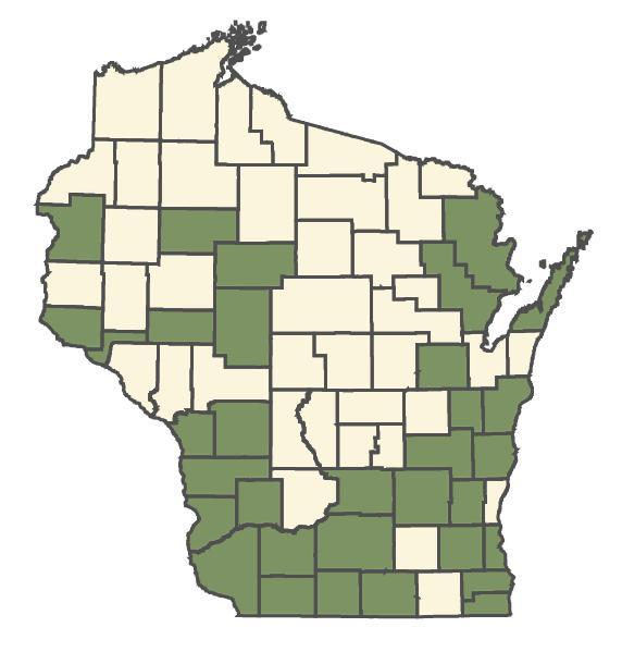 Elymus villosus var. villosus dot map