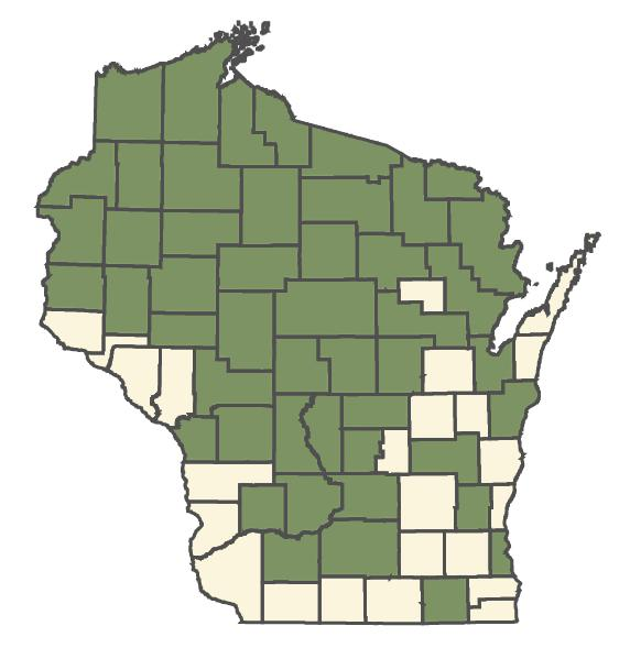 Glyceria canadensis dot map