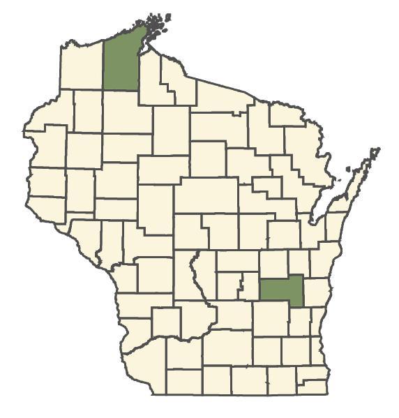 Phragmites australis subsp. americanus dot map
