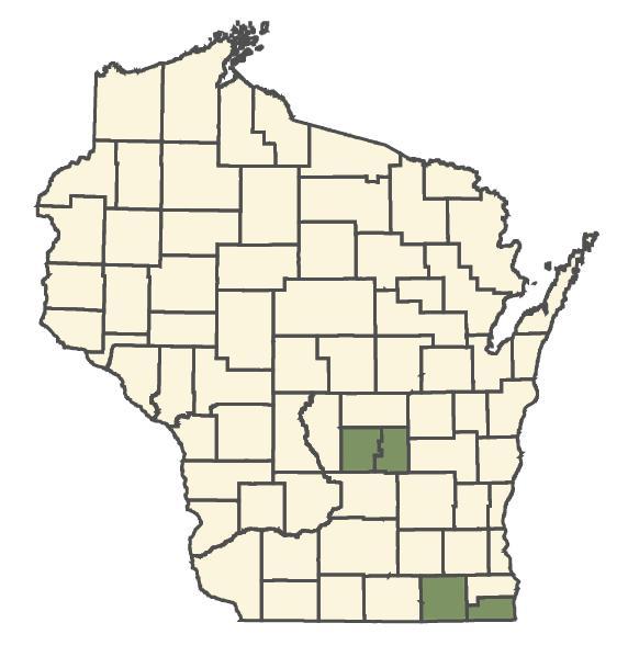 Scleria verticillata dot map
