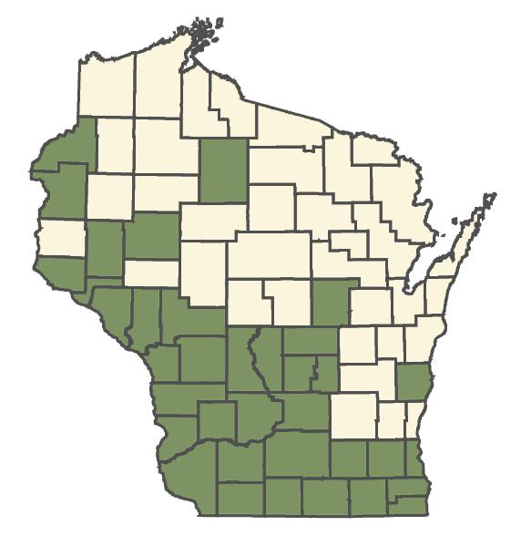 Scutellaria parvula var. missouriensis dot map