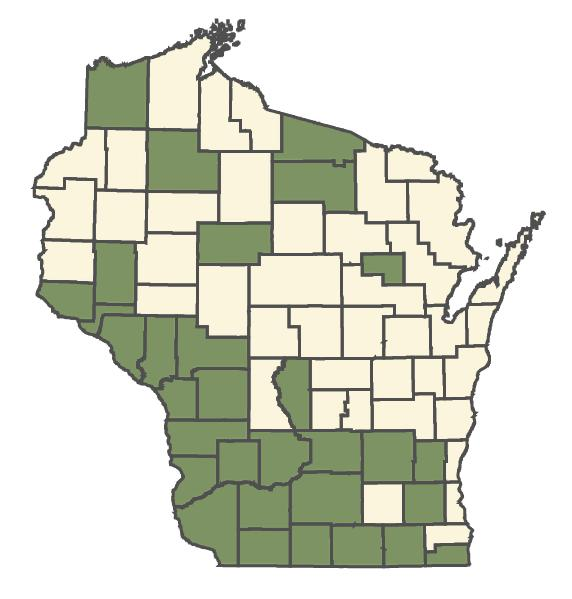 Silphium perfoliatum var. perfoliatum dot map