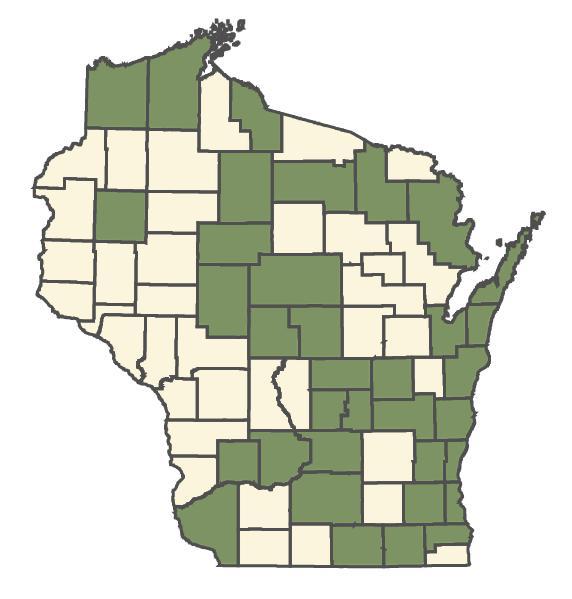 Sorbus aucuparia dot map